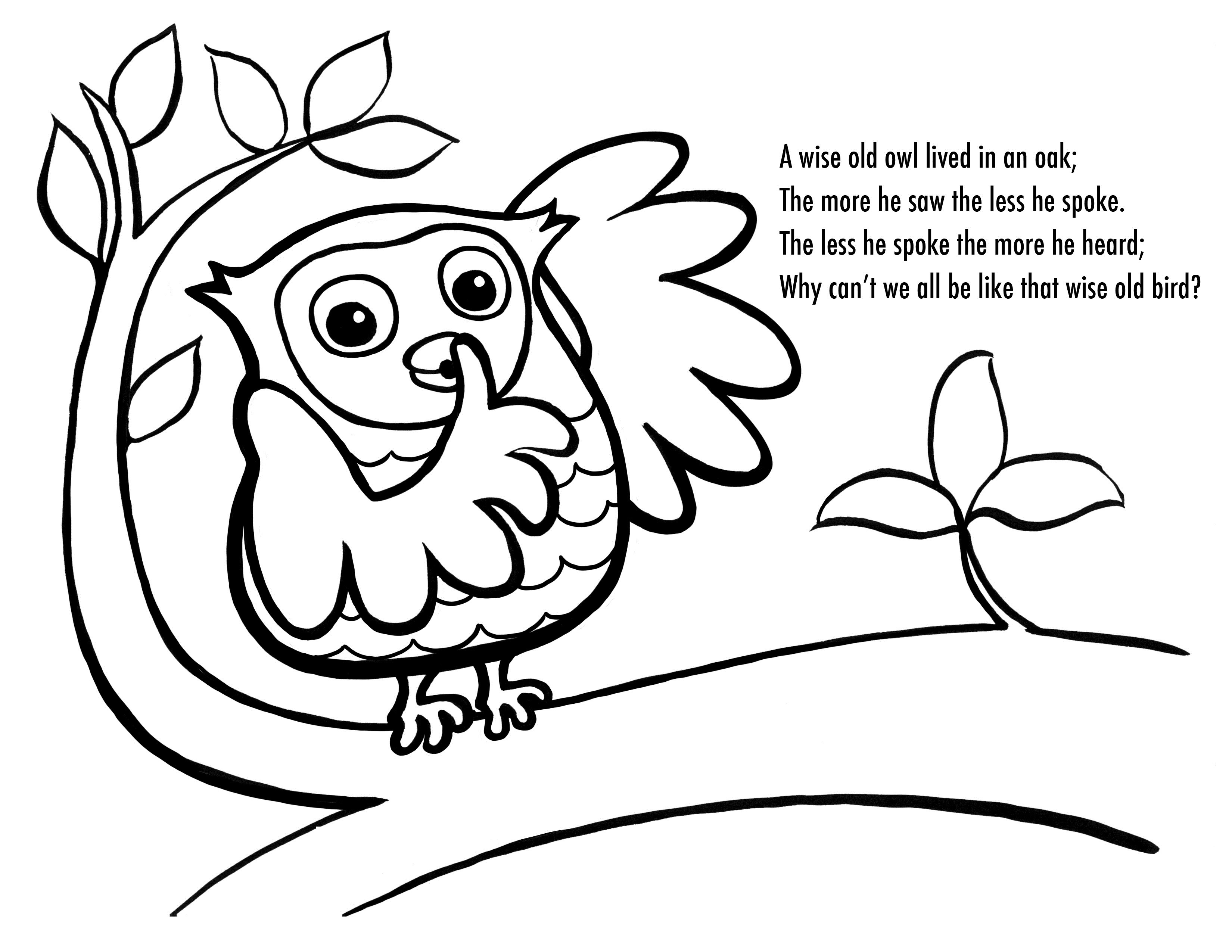 Coloring Pages For Kides  Free Printable Owl Coloring Pages For Kids