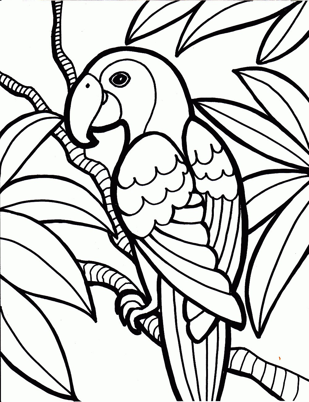 Coloring Pages For Kids Birds  Free Printable Parrot Coloring Pages For Kids