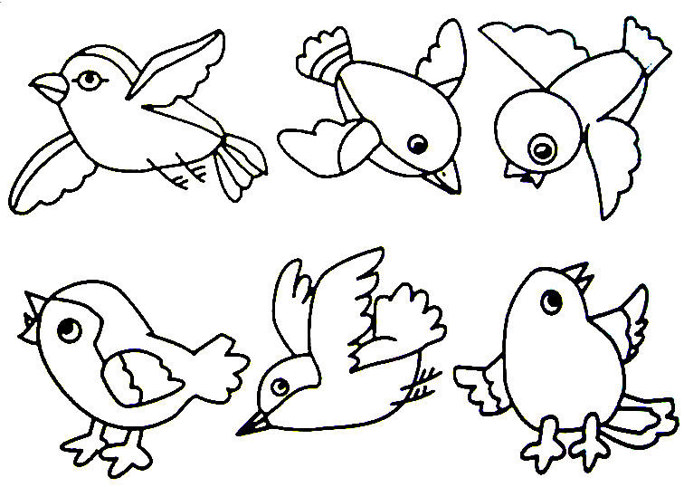 Coloring Pages For Kids Birds  bird 2