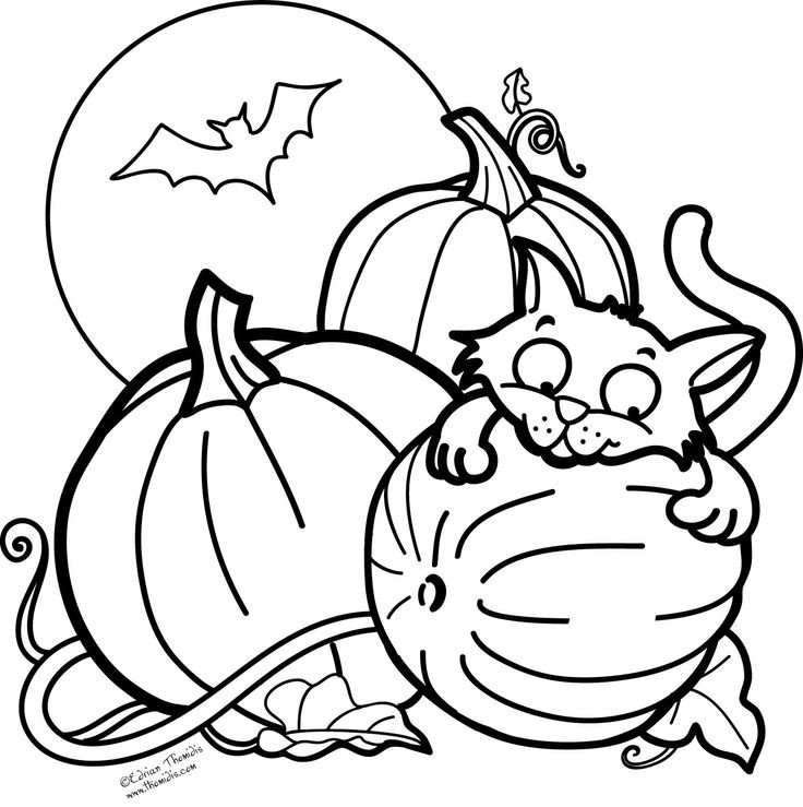 Coloring Pages For Kids Fall  56 best Colouring Halloween Autumn images on Pinterest