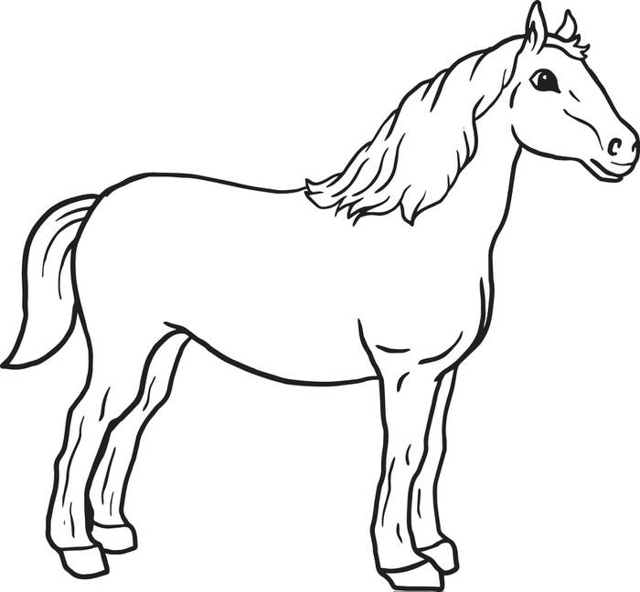Coloring Pages For Kids Horse  Horse coloring pages for kids ColoringStar
