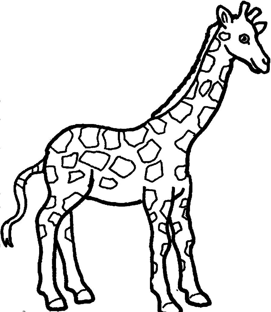 Coloring Pages Giraffe  Baby Giraffe Coloring Pages Bestofcoloring