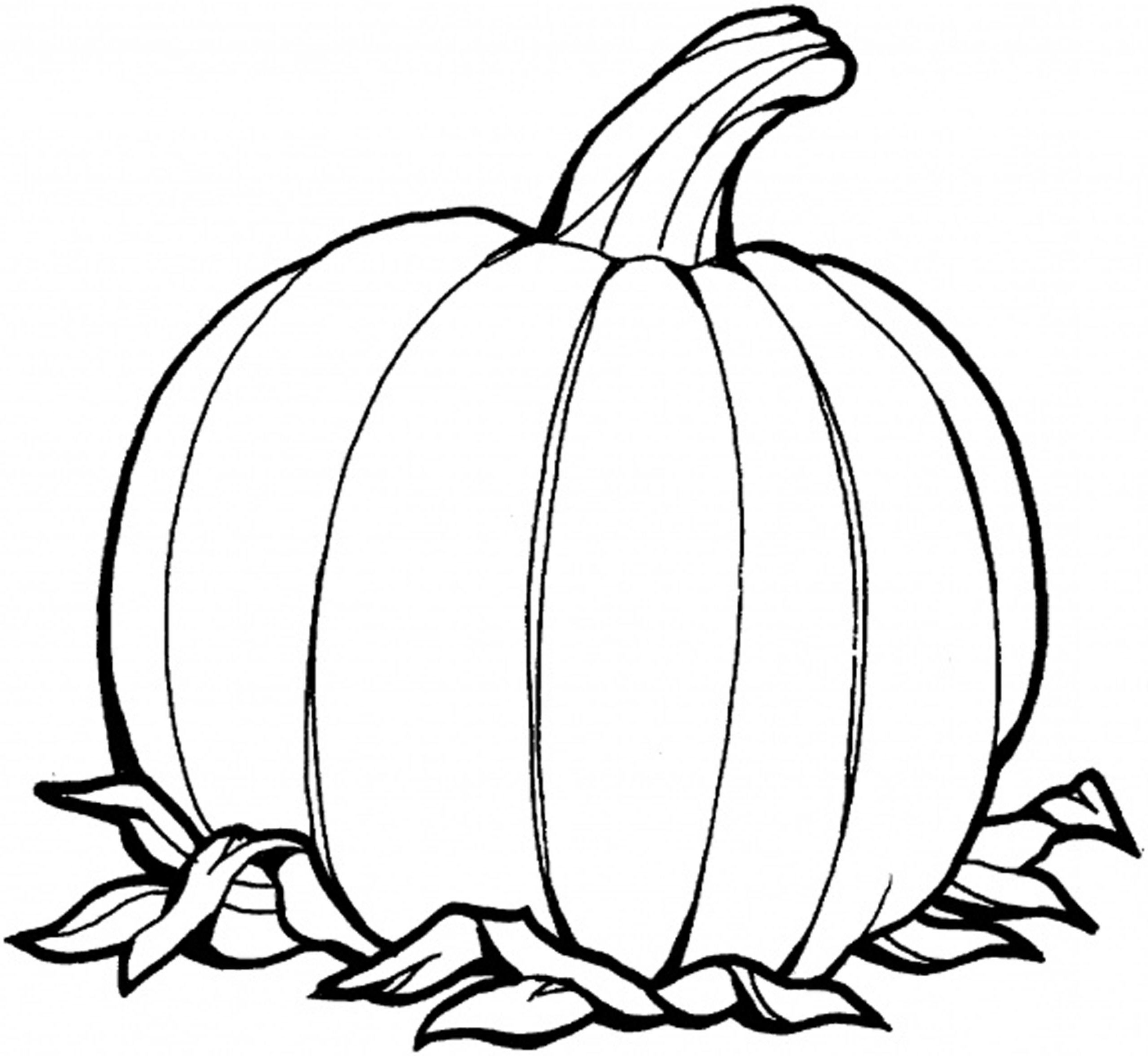 Coloring Pages Of Pumpkins  Pumpkin Outline Printable Coloring Home