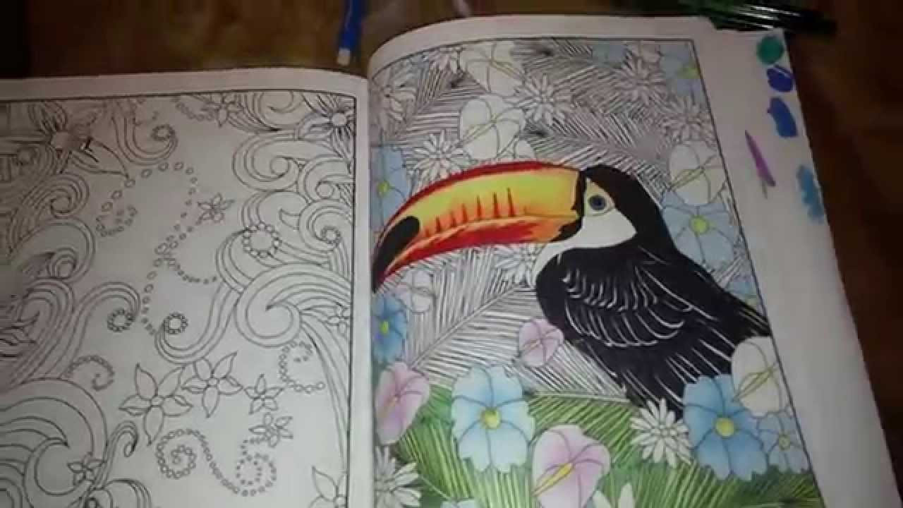 Coloring Pencils For Adult Coloring Books  Adult Coloring Book pencils markers Review