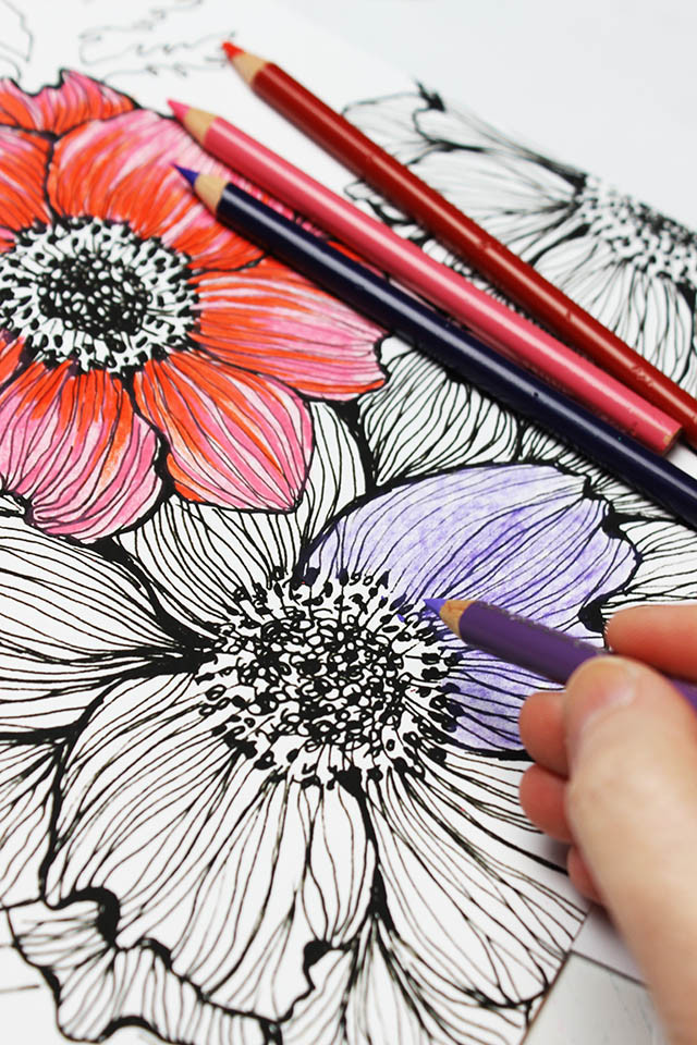 Coloring Pencils For Adult Coloring Books  alisaburke colored pencils a few tips and tricks