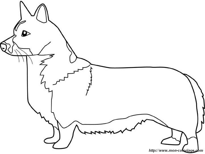 Corgi Coloring Pages  The gallery for Corgi Coloring Pages