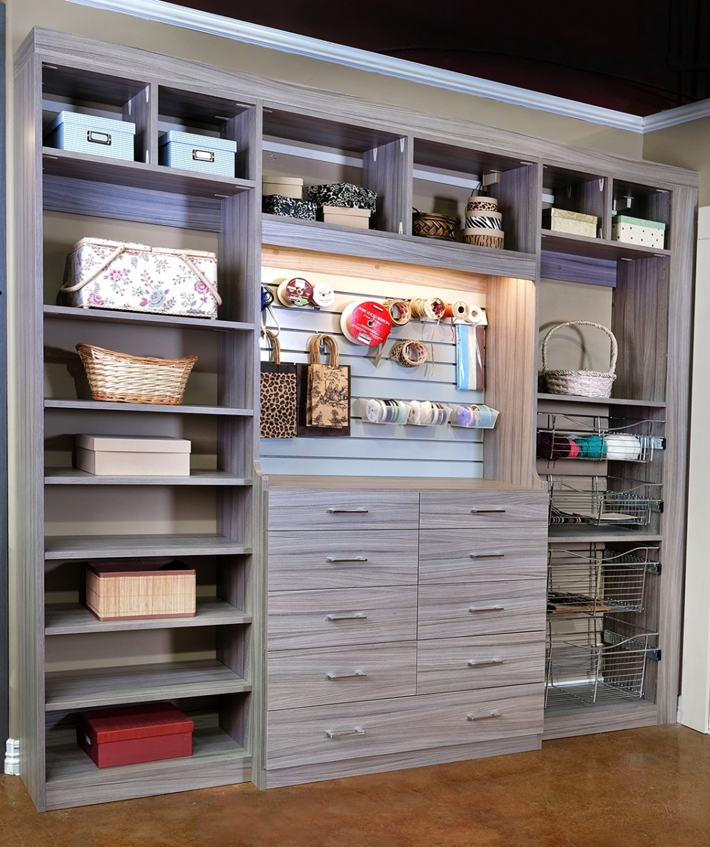 Craft Closet Organization Ideas  Closets To Go Reach In Craft Closet Organizer Laundry And