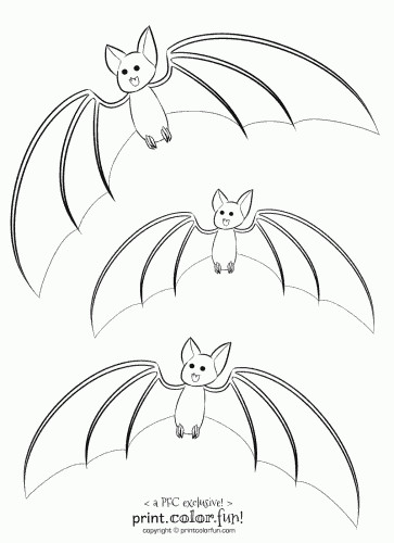 Cute Bat Coloring Pages  3 cute bats coloring page Print Color Fun