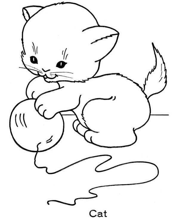 Cute Cat Coloring Pages  Cute Cat Coloring Sheets For Kids 7188 Bestofcoloring