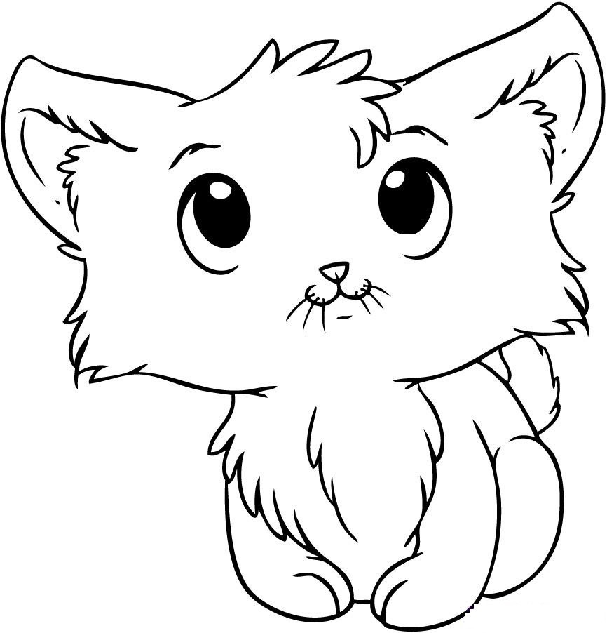 Cute Cat Coloring Pages  Kitten Coloring Pages Best Coloring Pages For Kids