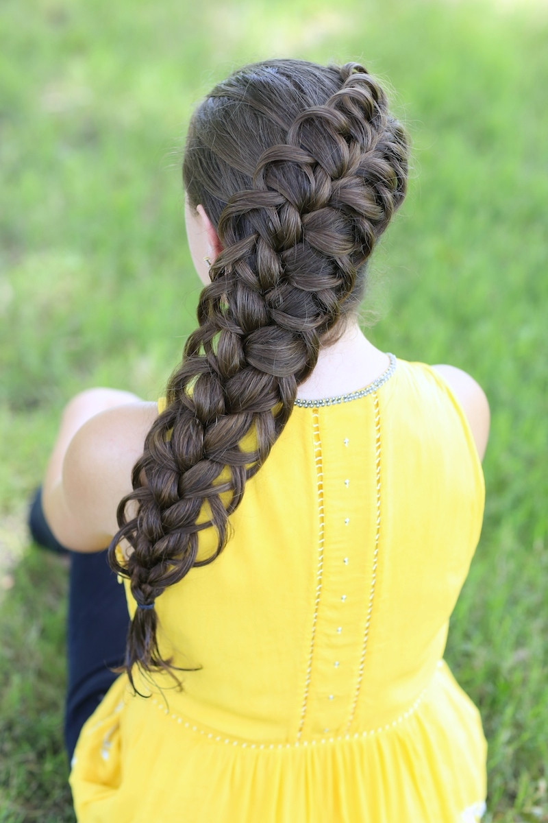 Cute Hairstyles For Braids  Diagonal French Loop Braid Cute Braid Hairstyles