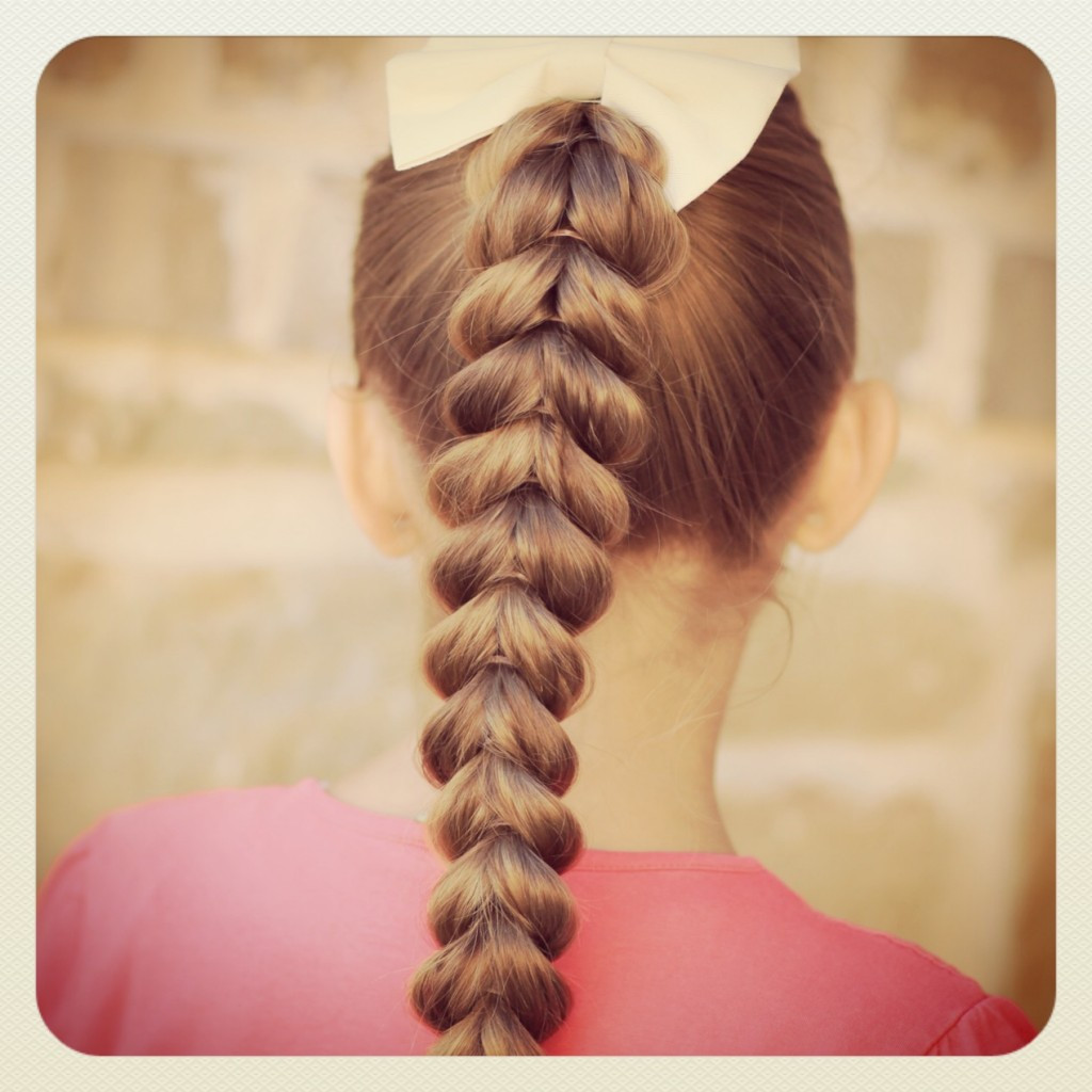 Cute Hairstyles For Braids  Pull Through Braid Easy Hairstyles