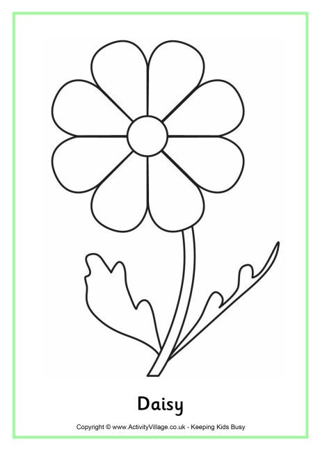 Daisy Coloring Pages  Daisy Colouring Page