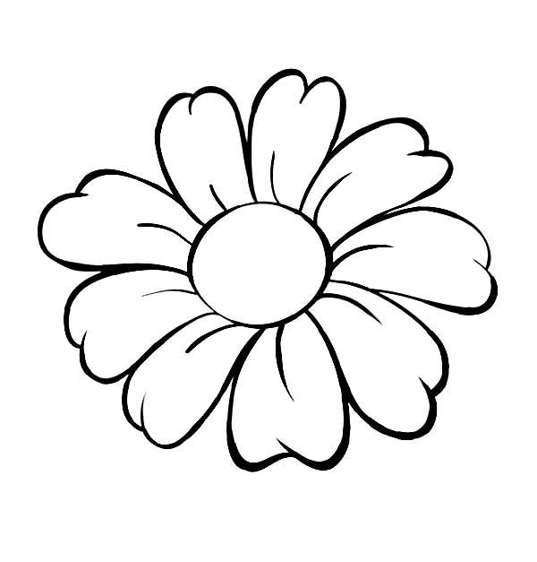 Daisy Coloring Pages  Daisy Flower Daisy Flower Outline Coloring Page