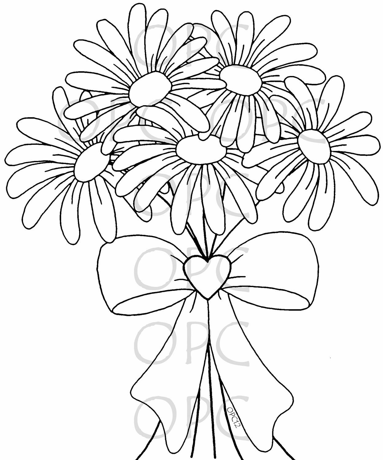 Daisy Coloring Pages  Gerber Daisy Free Colouring Pages