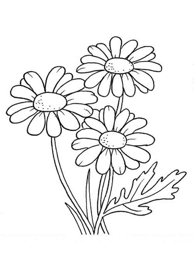 Daisy Coloring Pages  30 Printable Autumn Fall Coloring Pages
