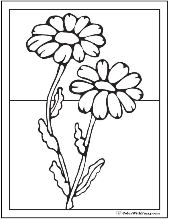Daisy Coloring Pages  Daisy Coloring Pages 15 Customizable PDFs