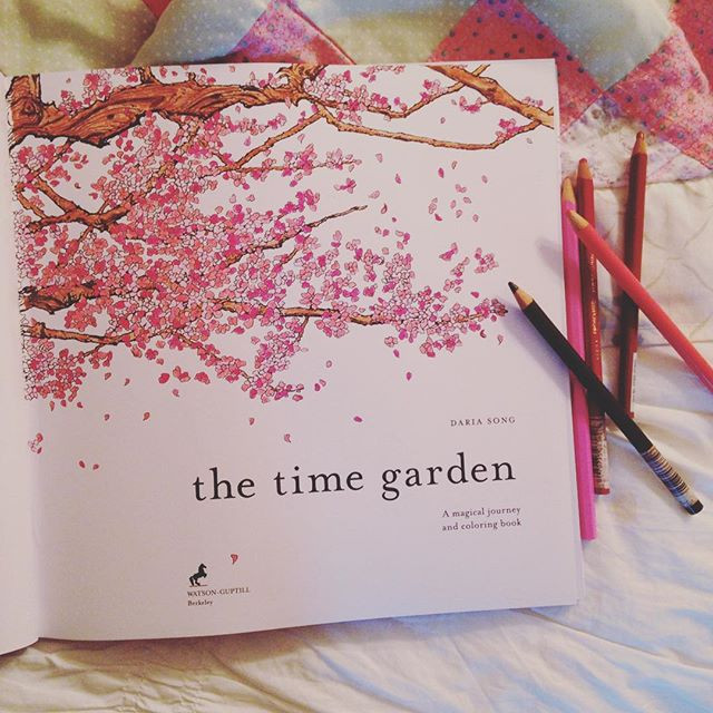 Daria Song Coloring Books  Adult Coloring Books The Time Garden