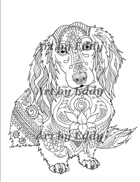 Daschund Coloring Book  Art of Dachshund Coloring Book Volume No 1 Physical Book