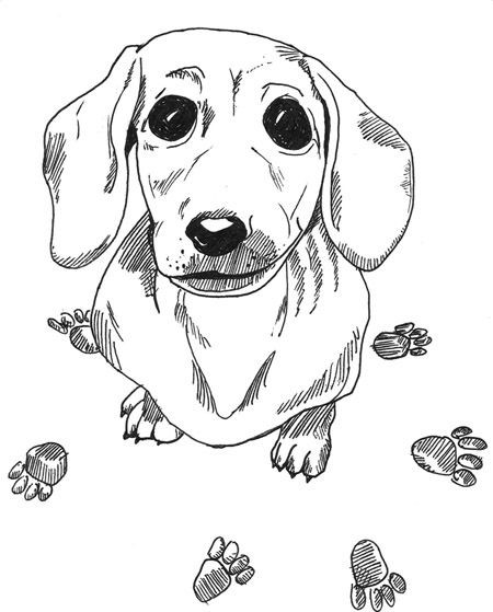 Daschund Coloring Book  29 Awesome All Dogs Go To Heaven Coloring Pages