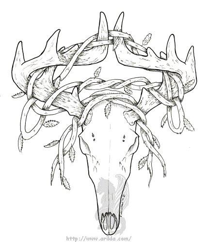 Deer Head Coloring Pages  Deer Skull with vines ink by arikla on DeviantArt