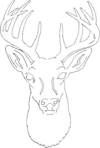 Deer Head Coloring Pages  Free Deer Wood Burning Patterns WoodWorking Projects & Plans