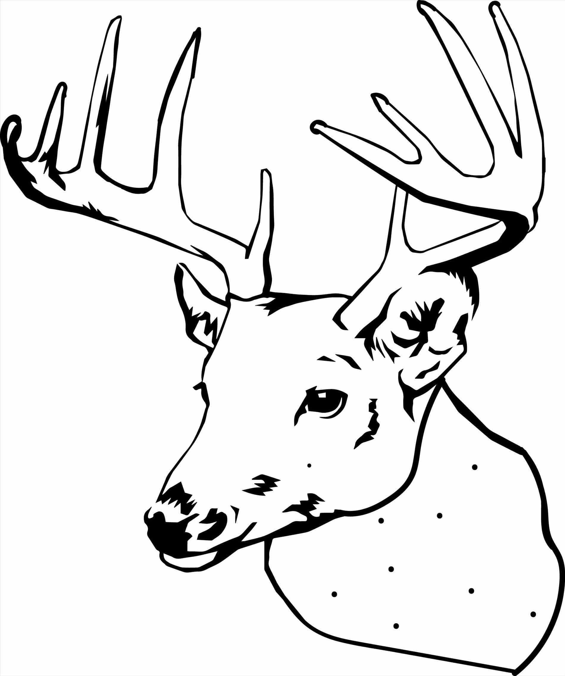Deer Head Coloring Pages  Deer Coloring Page Image Clipart grig3