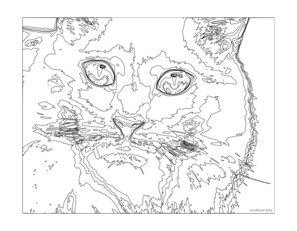 Difficult Color By Number Coloring Pages For Adults  Challenging Coloring Pages