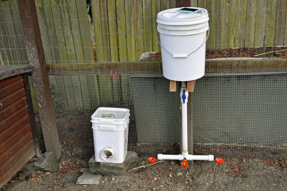 Best ideas about DIY Automatic Dog Waterer . Save or Pin 27 DIY Chicken Feeder And Waterer Plans And Ideas Now.