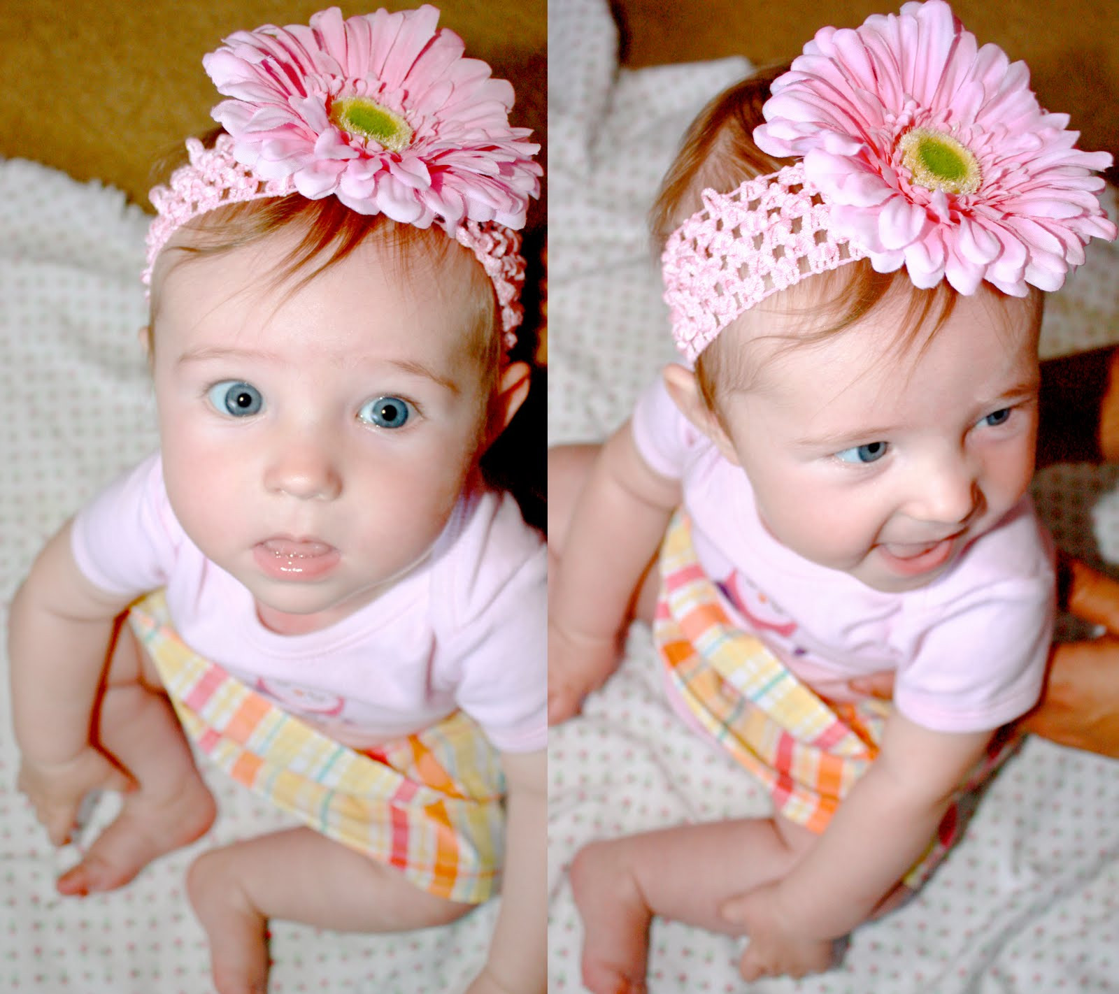 DIY Baby Headbands  DIY Baby Flower Headbands Wild Oak Stream