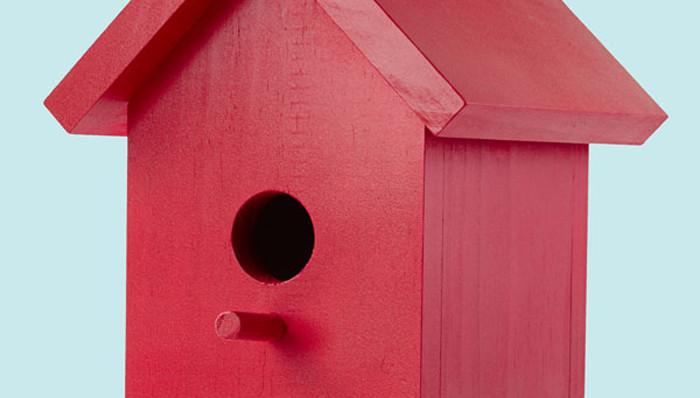 DIY Birdhouse Kit  Easy e Board Bird House Plans