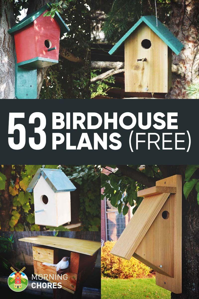 DIY Birdhouse Kit  53 Free DIY Bird House & Bird Feeder Plans that Will