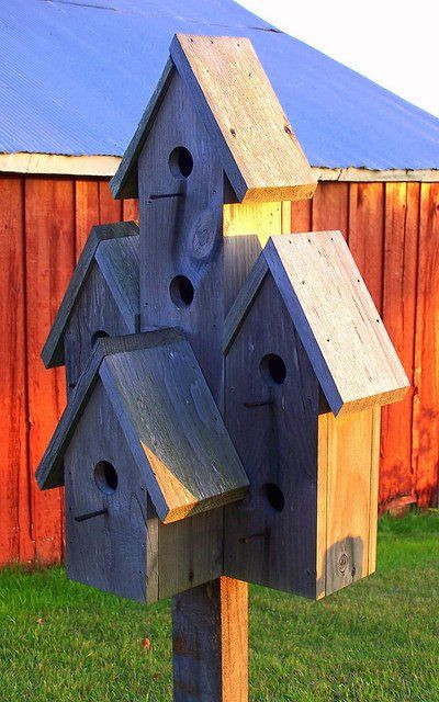 DIY Birdhouse Kit  How To Make A Bird Feeder Post WoodWorking Projects & Plans