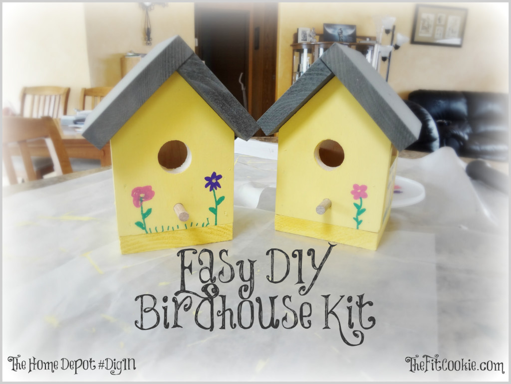 DIY Birdhouse Kit  Easy DIY Birdhouse Kit Project • The Fit Cookie
