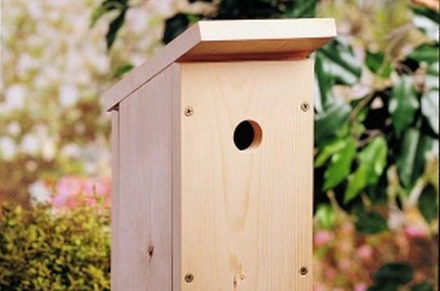 DIY Birdhouse Kit  e Board DIY Birdhouse