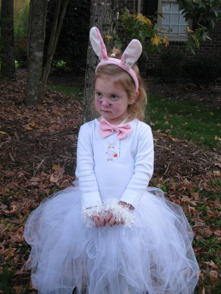 DIY Bunny Costume Toddler  Bunny Costume idea girl