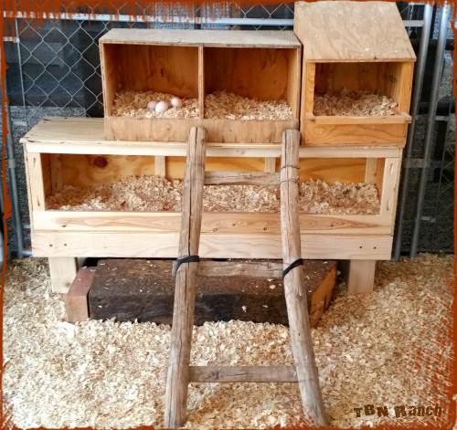Best ideas about DIY Chicken Nesting Boxes . Save or Pin 20 Easy & Cheap DIY Chicken Nesting Boxes Now.