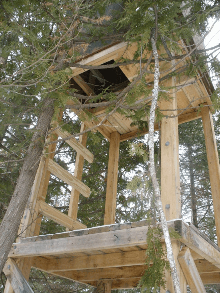 Best ideas about DIY Deer Blinds . Save or Pin How to Build a Natural Deer Hunting Blind Know Prepare Now.