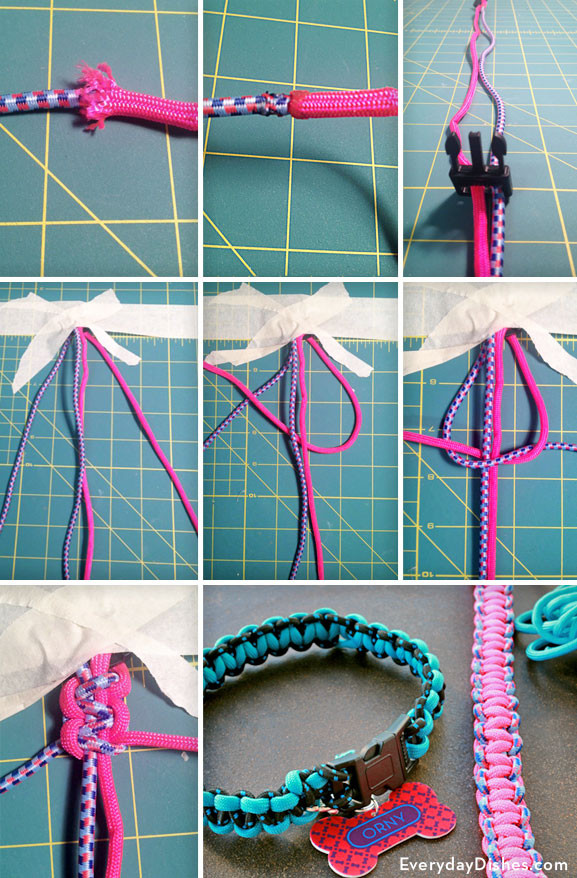 DIY Dog Collar  DIY Braided Dog Collar Video Tutorial