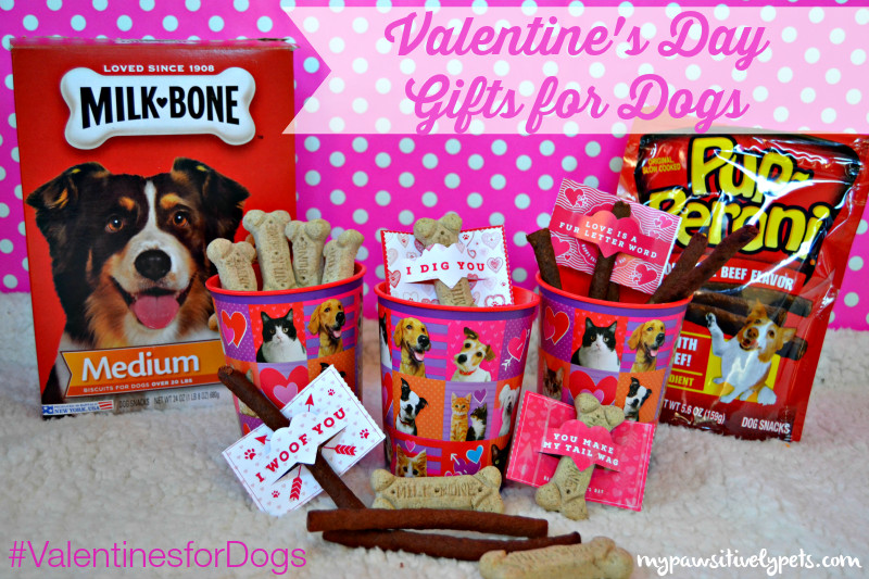 DIY Dog Gifts  DIY Valentine s Day Gifts for Dogs ValentinesForDogs