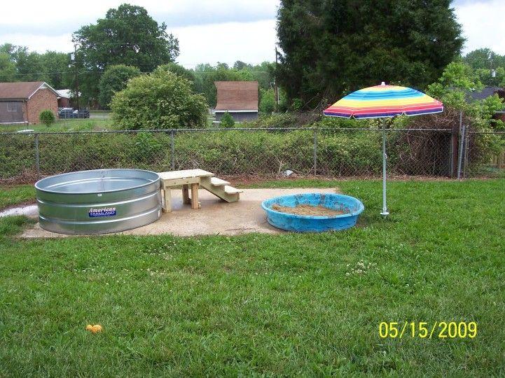 DIY Dog Playground  dog playground ideas Dogs Pinterest