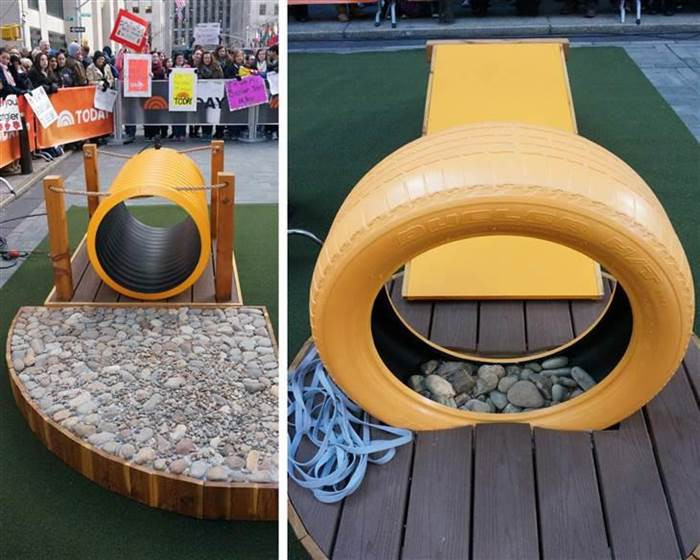 DIY Dog Playground  'Property Brothers' share how to create a dog park in your