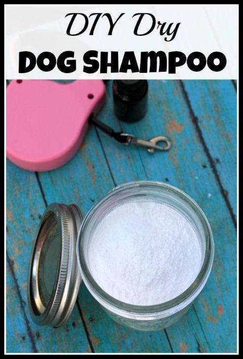 DIY Dog Shampoo  DIY Dry Dog Shampoo