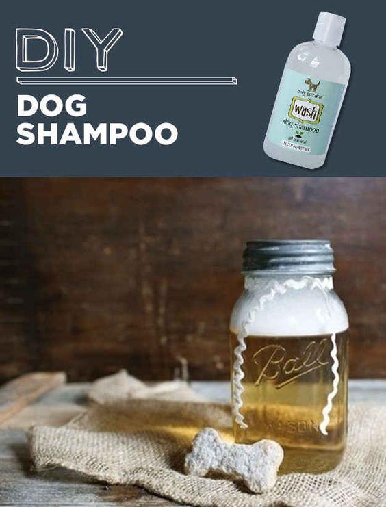 DIY Dog Shampoo  Household products Diy dog shampoo and Dog shampoo on