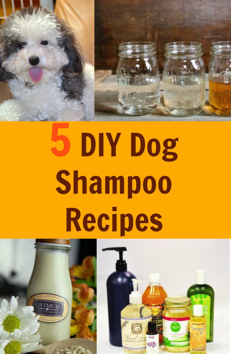 DIY Dog Shampoo  5 DIY Dog Shampoo Recipes Fabulessly Frugal