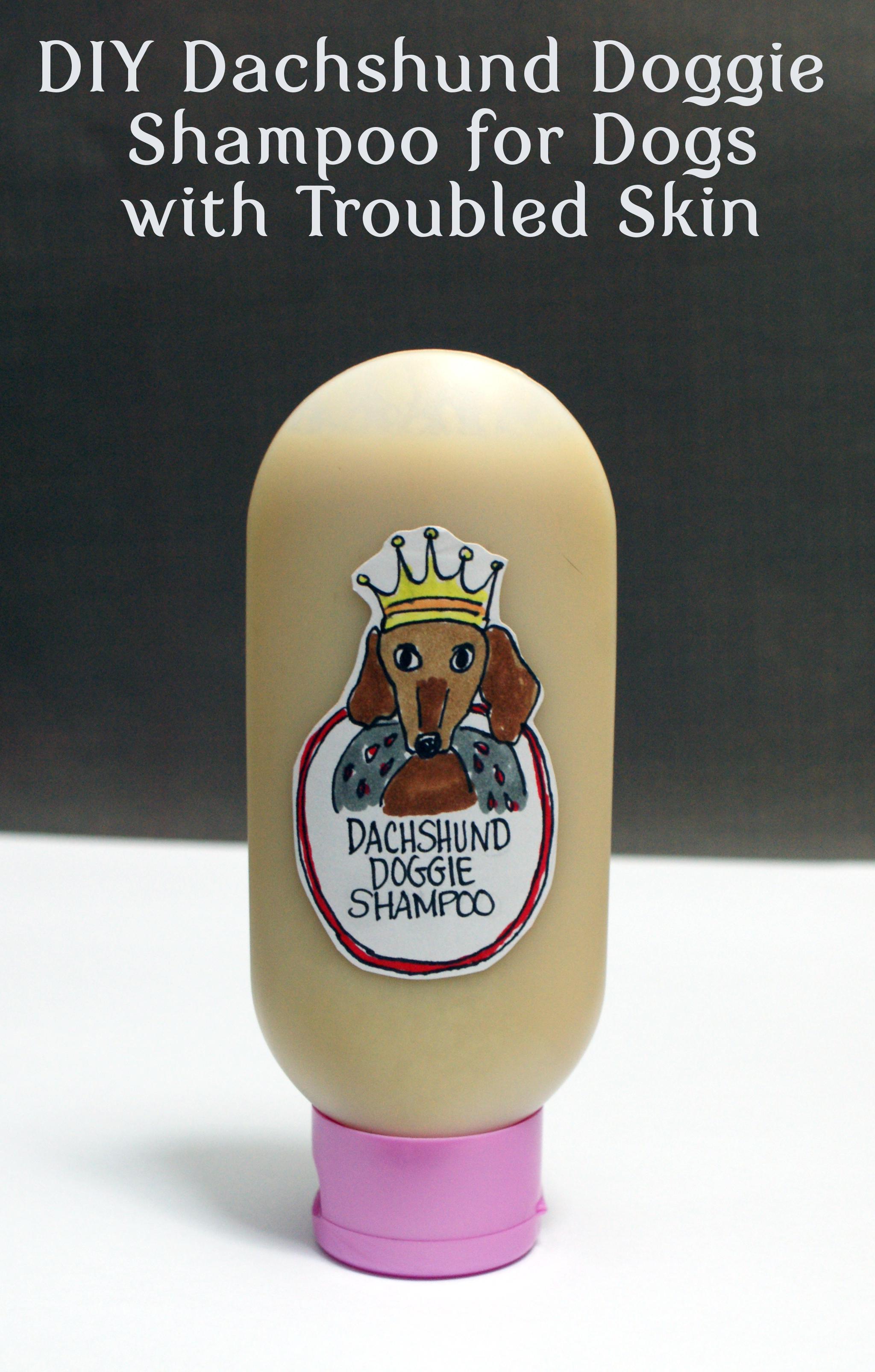 DIY Dog Shampoo  Homemade Dog Shampoo Recipe with Neem Oil for Dogs with