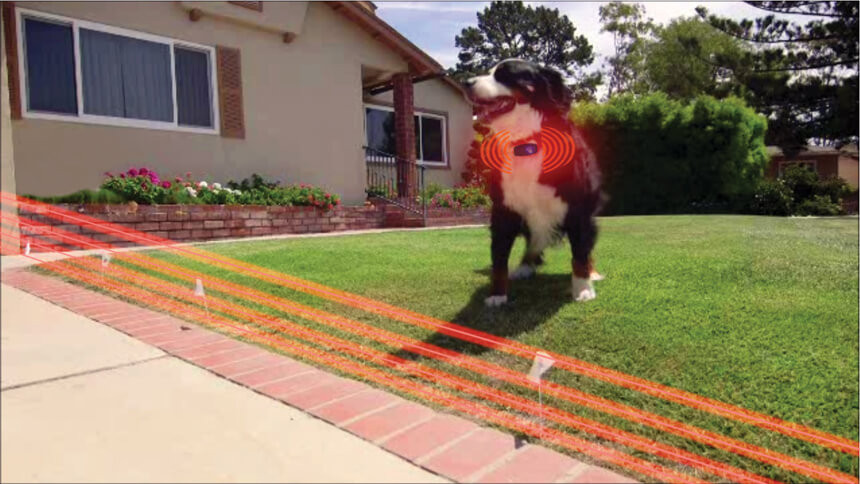 DIY Electric Dog Fence  10 Best Dog Fence Systems to