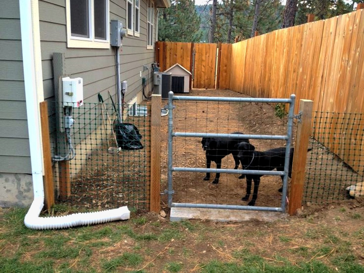 DIY Electric Dog Fence  Modern Dog Fence Ideas