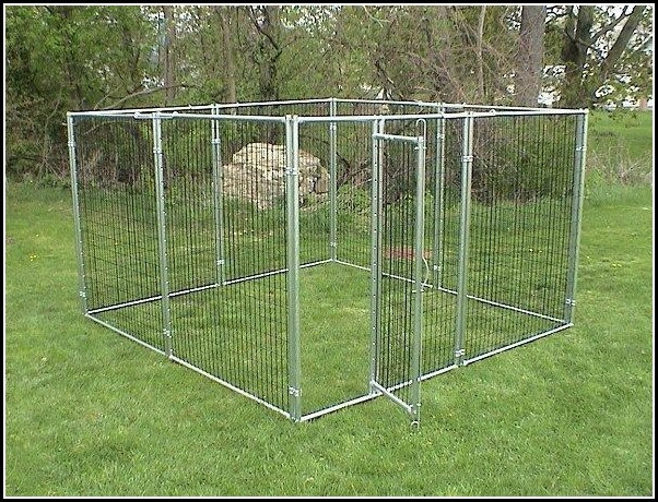 DIY Electric Dog Fence  Dog Fence Diy Dog Pet s Gallery G6kR6eWkOx