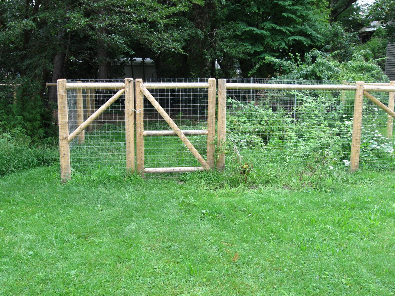 DIY Electric Dog Fence  Invisible Fence Madison Ms • Fences Ideas